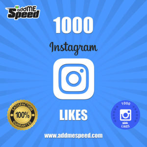 buy 1000 followers instagram